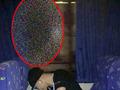 【心霊写真】死神が窓ガラスにくっきり映り込んだ!! 命の危険も!?