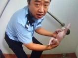 公衆トイレの便器に頭を突っ込んだ状態で発見された赤ん坊!! 悲惨すぎる乳児遺棄=中国