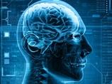 「半分以下の脳」しかない男、なぜ不自由なく生きられるのか? 人体の奇跡!!