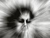 幽霊のほとんどは悲惨な死を遂げた「男性」である(最新研究)
