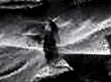 聖母マリアは火星人で決定か!? 当たりすぎて封印された「ファティマの第3予言」、恐怖の内容!!