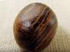 信者急増中の「モルモン教」が、秘蔵の翻訳機「聖見者の石」の写真を公開!