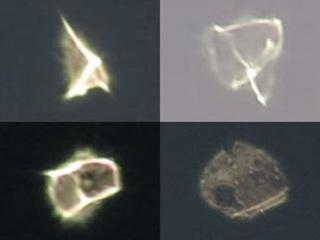 【衝撃動画】次々と姿を変える「変形発光体UFO」が、あまりにも不思議すぎる!!=NY上空