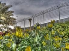 集団強姦、不倫殺人…!! 今年起きた最悪の「現職警官逮捕事件」3選!