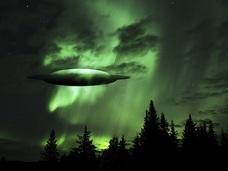 """UFO目撃多発地帯で、相次ぐ犬の健康被害!! やはり「レンデルシャムの森」には超ヤバい""""何か""""がある!"""