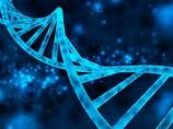 【驚異の遺伝子学】世界初、死んだ胎児が父親に!! 謎の他者細胞「マイクロキメリズム」の怪