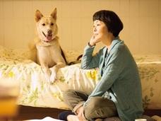 牛や豚の肉は食べるのに、なぜ犬の命だけを救うのか? 犬の殺処分問題について山田あかね監督が語る!