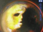 【宇宙人特集】火星の前世記憶もつ2歳少年が語ったレムリア人の謎と地球滅亡