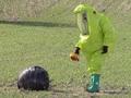 【異常事態】スペインに次々と謎の球体が落下!! 政府がUFO情報隠蔽の可能性も!?