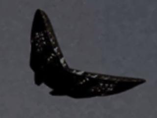 """巨大な""""蝶型""""UFO「メタル・バタフライ」出現!! 軍用ヘリに追跡されていた!?=米国"""