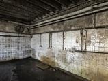 【閲覧注意】ガス室で迎える最後 ― 鳴き叫び、恐怖に怯えながら……!!
