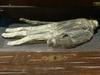 """""""栄光の手""""がもつ不思議な魔力 ― 周囲の者を一瞬にして眠らせる不思議な手"""