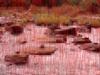 干上がった川から数千の男根が出てきた!? インド人もびっくりの遺跡とは?