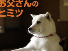 """ソフトバンク、au、トヨタ…""""コピペCM""""ばかりの日本! エンブレム問題が起きたのも必然だった?"""