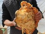 食べると不老不死になる肉塊「太歳」が発見され大騒ぎに=中国