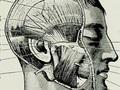 【超・閲覧注意】生きたまま、顔の表面だけキレイに吹き飛んでしまった兵士=シリア