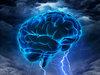 頭部移植をしたら別人が生まれる!? 前世記憶からゲーム脳まで科学ライター2人が脳科学に迫る!
