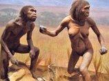 """人類進化史に革命が起きる!? """"ホビット""""と呼ばれたフローレス原人は、奇形か新種人類か?"""