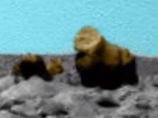 タコ、ウサギ、おじさん… 火星に棲んでいるかもしれない生物9選