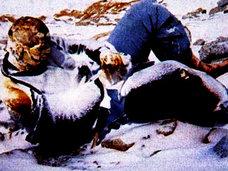 「置いて行かないで…」エベレストに残る200体以上の遺体の意外な役目とは?