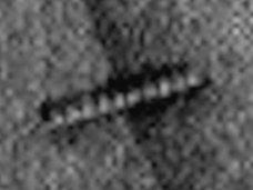 【衝撃】「火星には生物が100%存在する!」NASAが原始生物(ワーム)の写真撮影に成功か?