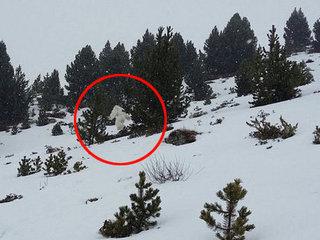 【衝撃動画】ついにイエティがスペインの雪山に出現! あまりの反響で捜査が開始される