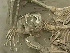 1200年前の生贄の遺骨!