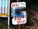 【街角発見】超スクリーミングな看板! 別の意味でも危ない!!