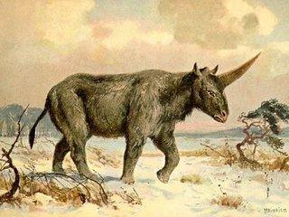 やはり伝説のユニコーンは実在していた! 2万6千年前の人類と「エラスモテリウム」の出会いで判明か!?