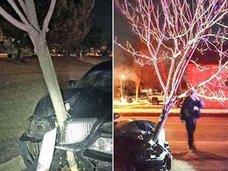 ボンネットに木が刺さったまま帰宅した女性が逮捕!