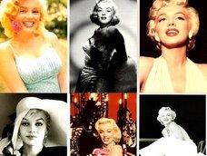 マリリン・モンローとの一夜の記憶も移植可能!? 人間の記憶を自由に操作することが可能になる(学者)