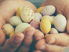 【閲覧注意】苦しめるほど美味になる!? 暴れるウズラの腹をひきむしり、卵を取り出す露店商=中国