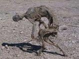 人間とも動物とも違う! 完全に正体不明な「立ったままのミイラ」が発見される=メキシコ