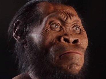 新種の人類か!? 世紀の大発見「ホモ・ナレディ」の骨に議論沸騰中!