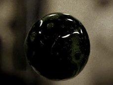"""停電したミール宇宙船で密かに成長していた""""謎の球体""""の正体は!? 専門家「生命は宇宙のいたるところに存在している」"""
