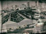 築地市場で売られた原爆マグロ!? 毒魚「バラハタ」どころではない築地のヤバい日常