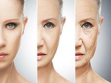 くるぞ不老不死! イースター島で発見された「ラパマイシン」の老化防止効果がヤバすぎる!(最新研究)