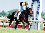 10万人が注目する競馬評論家がゴリ押しする「狙いの馬」とは?週末の日本ダービーはこの男に乗れ!