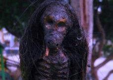 インドネシアで「焦げたロン毛のプレデター」が発見される! 地元民「人間の血を飲むジェングロットか…?」