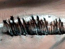 火星に「並木通り」が存在していた!?