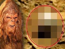 火星に「ビッグフットの頭蓋骨」が転がっていた! UMAとは地球外生命体だったのか!?