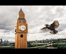 ロンドンに名所の形をした鳥の巣箱が登場!