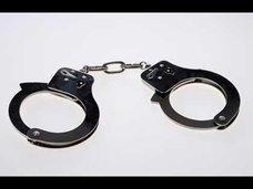 アボカド不足によりニュージーランドで犯罪が多発!?
