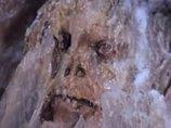 """ヒマラヤで発見された233万年前の「奇跡の""""凍った""""洞窟男」は本物か? ホモ・ハビリスの謎とは?"""