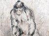 イエティ研究に本気で科学者たちが挑んでいる!? 謎の類人猿はやはりいるのか?