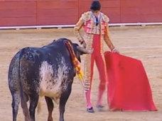 【閲覧注意】今世紀初、闘牛士が死亡 ― 牛の角が肺に達するその瞬間=スペイン
