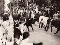 【閲覧注意】牛追い祭りでの悲劇 ― 牛に吹き飛ばされ、命が途絶える瞬間