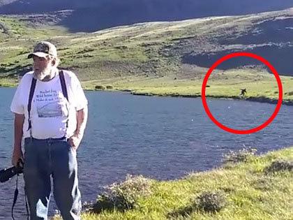 「パパ、あれはなに!?」 登山中の一家の眼前にビッグフット出現! 猛スピードで走り去る衝撃映像