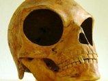 「宇宙人と人間の巨眼ハイブリッド頭蓋骨」が発見される! 中世秘密結社「ペガサスの光教団」と関連か?
