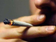 ジャマイカで大麻の売店がオープン?!